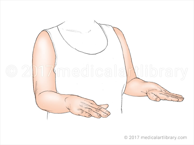 pronation of the forearm and hand